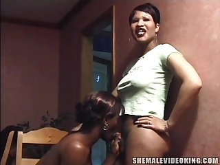 Ebony chunky shemale threesome