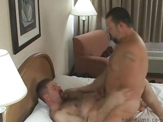 Hairy bears fuck in hotel room