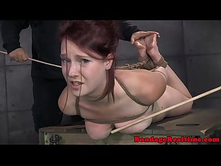 Ashley lane bdsm slut slapped in face