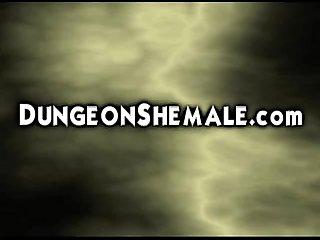 Extreme Transexual revenge