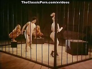 Jamie gilliscomma Sam gradycomma Chris Anderson in Classic Sex video
