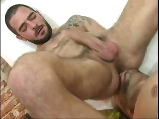 Gay Hairy Man Rimming