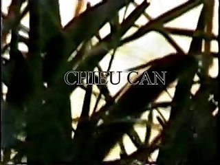 Video tam tien song hong Viet nam